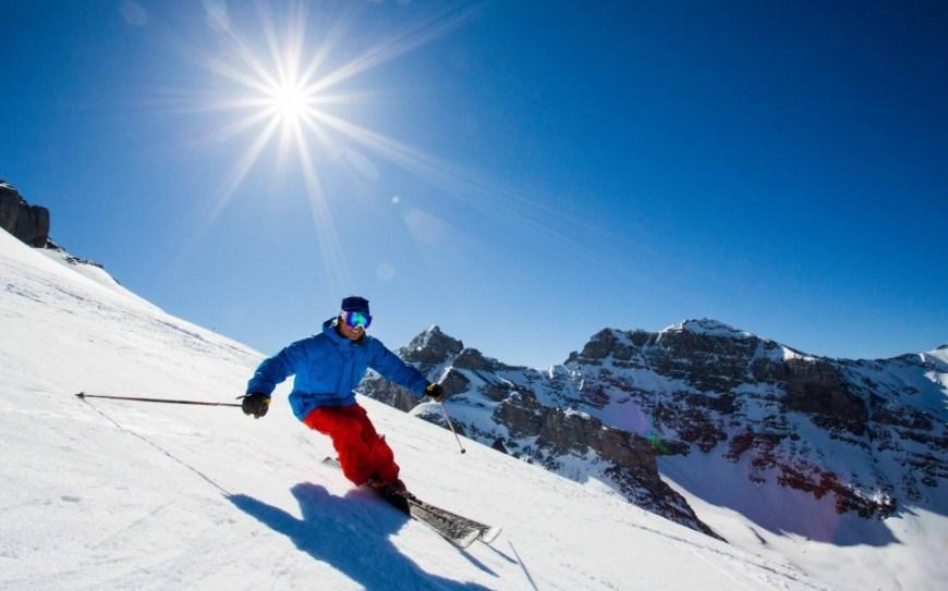 Partii de ski